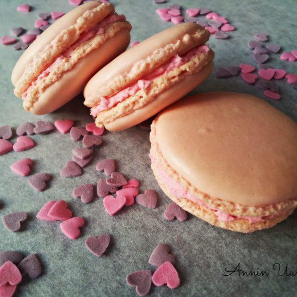 Vanilja Macarons