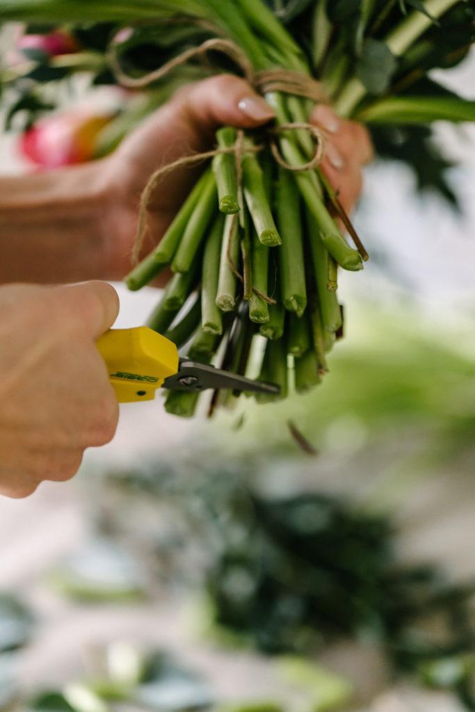 Kukkaterapiaa & Tulppaanisidontaa