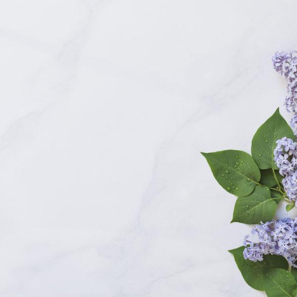 Syötävät kukat kakkujen koristelussa